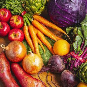 各式各樣的地中海蔬菜及水果