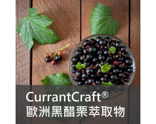 保健食品原料 - Currantcraft 歐洲 黑醋栗萃取物