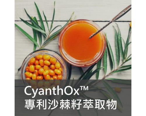 保健食品原料 - Cyanthox 沙棘籽 萃取物