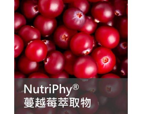 保健食品原料 - Nutriphy 蔓越莓 萃取物